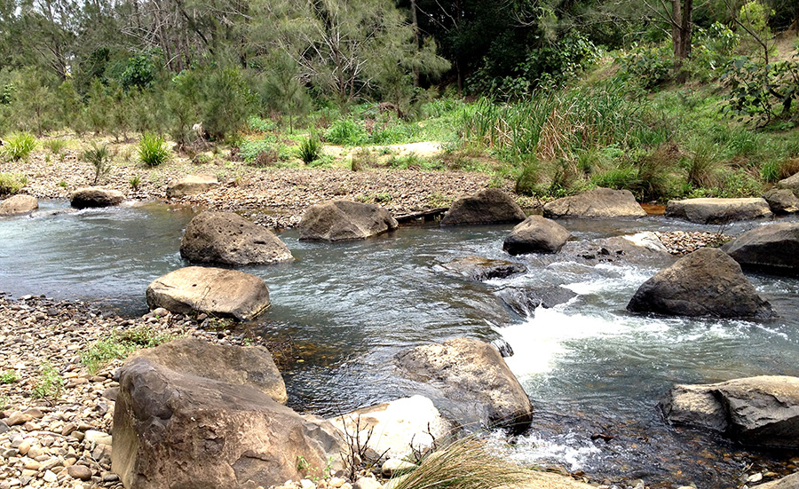 River Restoration Riparian Engineering