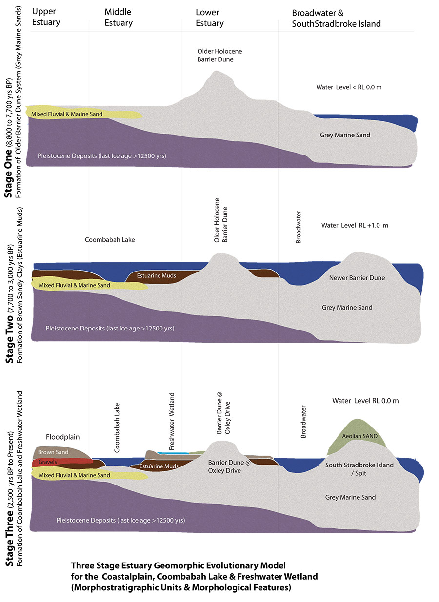 ssMorphostratigraphic-Evolution-of-Wetland